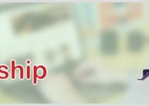AliDropship custom store